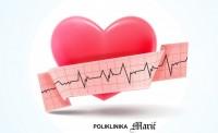 kardiologija1
